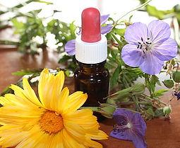natural-medicine-flower-essences-natural