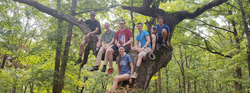 Slideshow - Hiking Tree Group