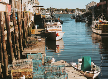 Dutch fish farmers mingle with Jonesporters