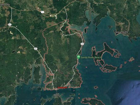Dutch seafood firm to seek state permit for $110M fish farm proposed in Jonesport