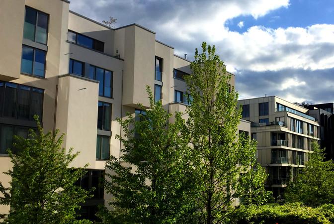 Schimmel in der Wohnung - Lösungen für ein weit verbreitetes Problem