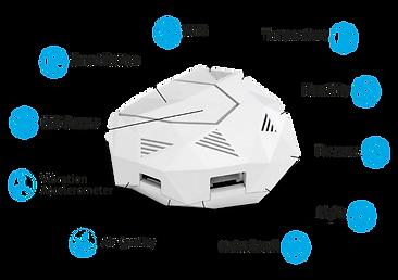 Rysta Sensor with descriptions.png