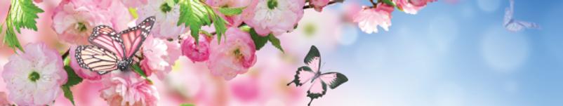 Spring-Header_2019 (1).png
