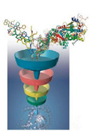 Structure And Ligand Based Virtual Screening Studies