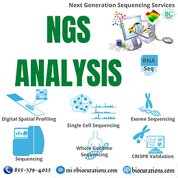 NGS Services