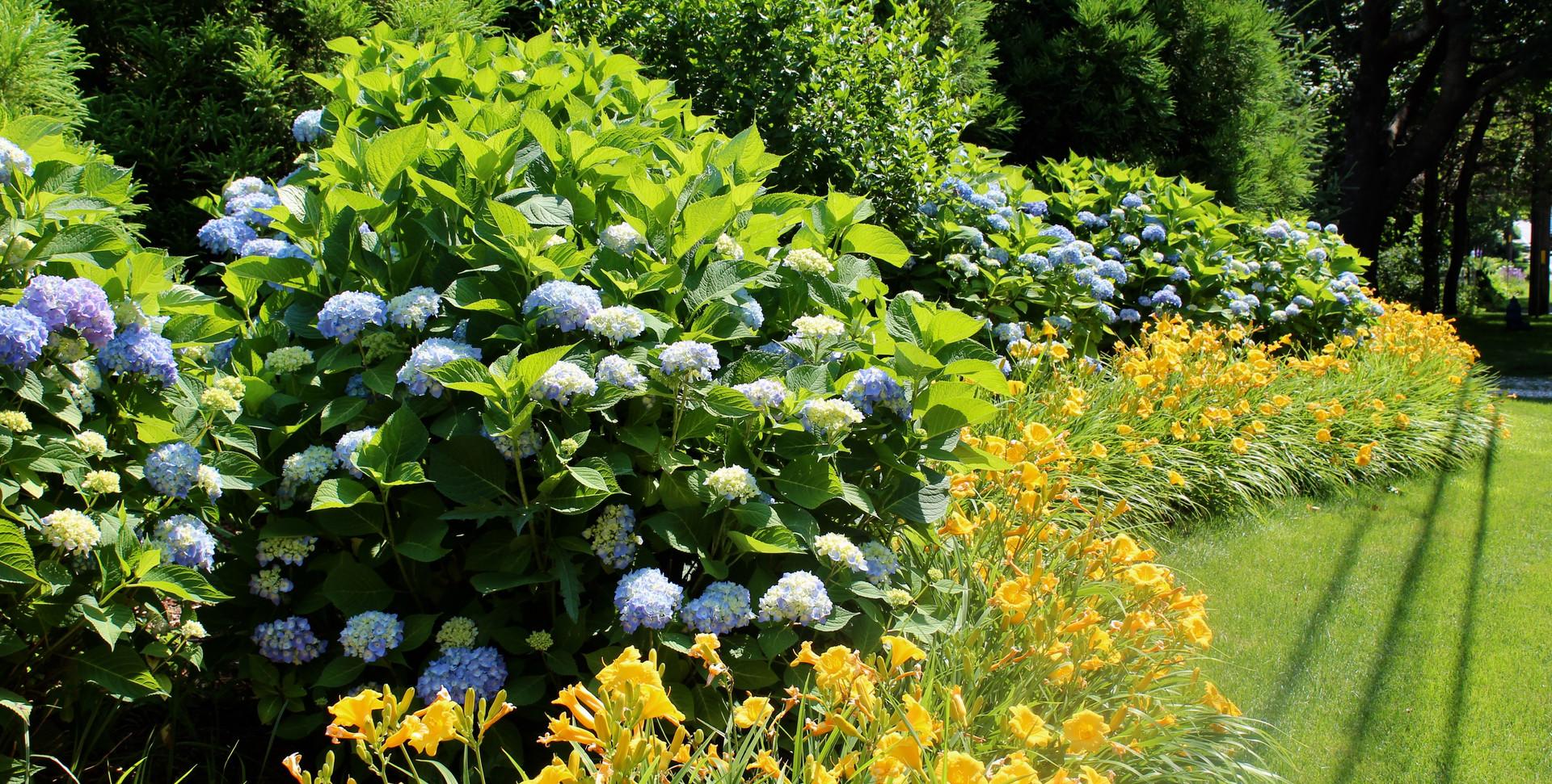 Cape Cod Gardens
