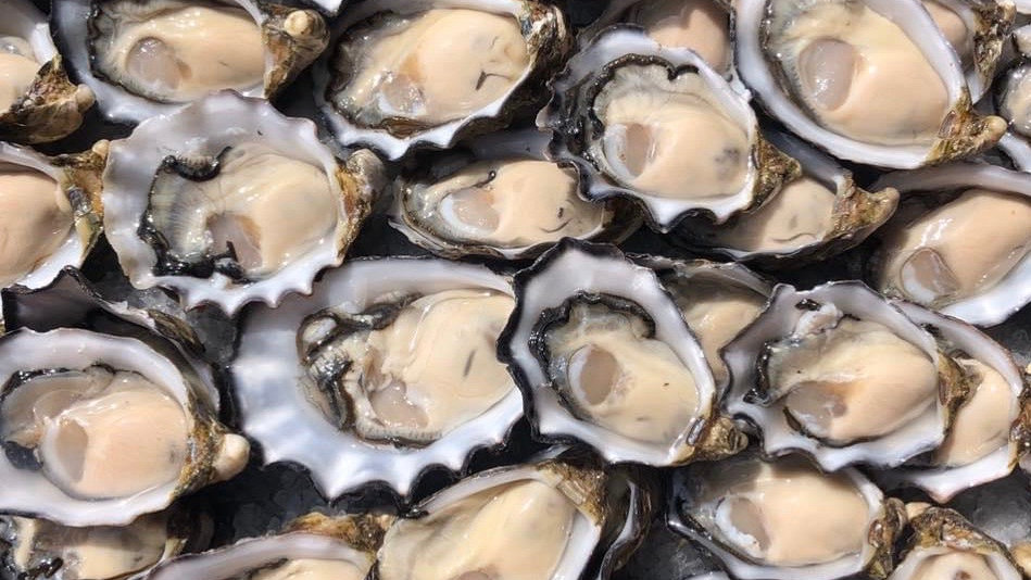 10 dozen bistro oysters - Adelaide Pick Up
