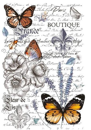 Papillon Hokus Pokus Image Transfer