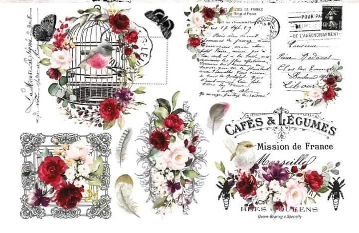Cage a Oiseaux Hokus Pokus Image Transfer
