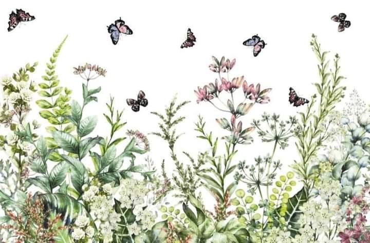 Marvelous Gardens Hokus Pokus Image Transfer