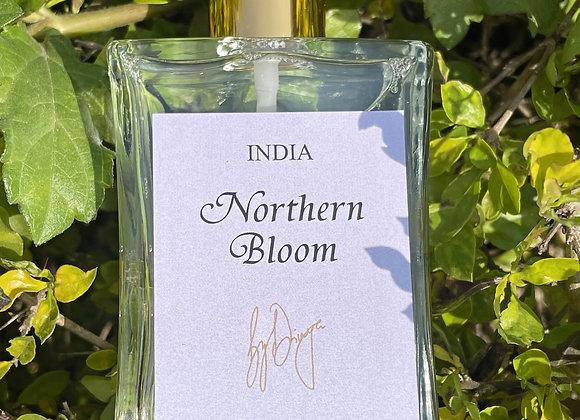 Northern Bloom