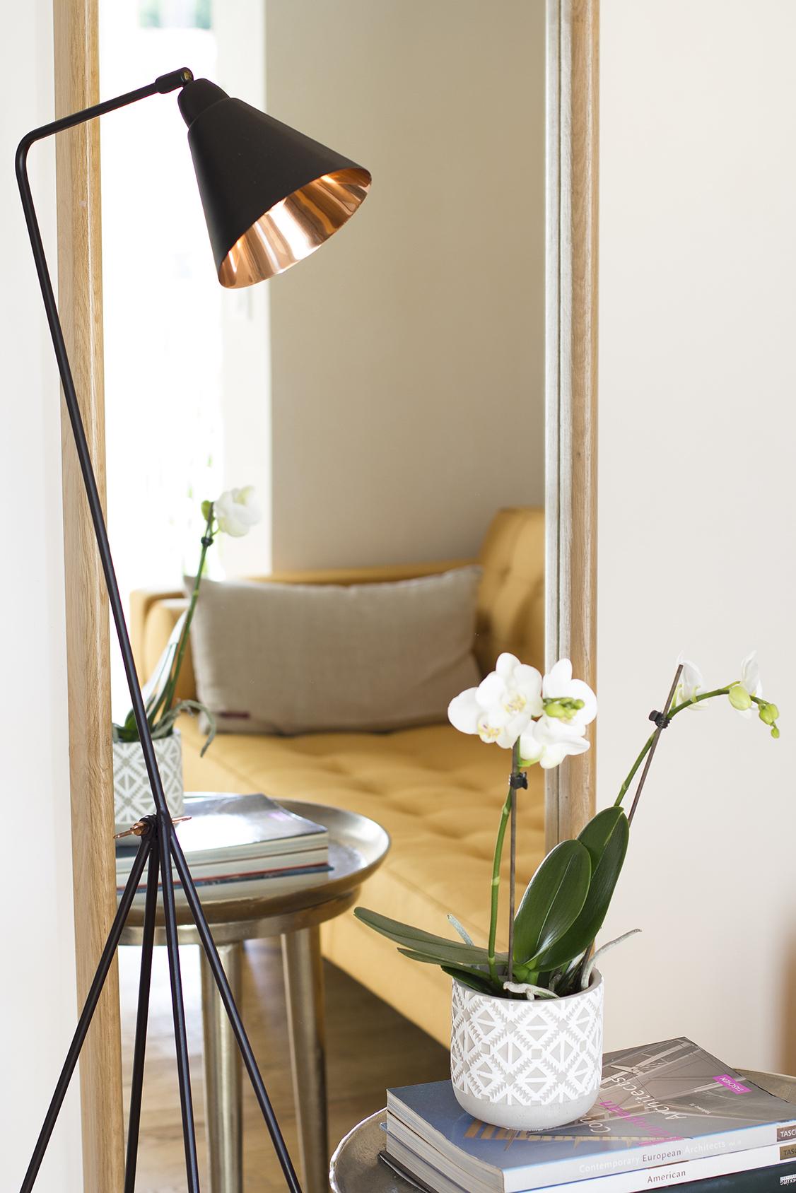 Photographie de chambre de Luxe