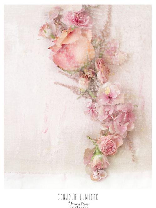 Poster Rose Forever