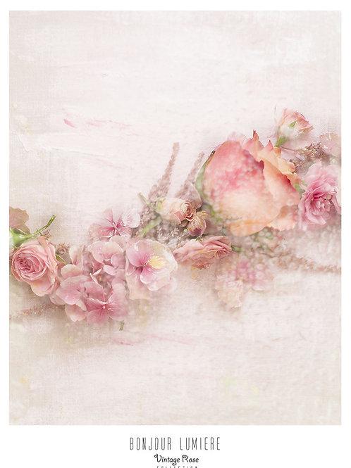 Poster Rose Fragrances