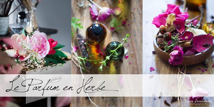 Composition-parfum-en-herbe-6.jpg