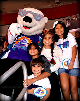 Orlando Solar Bears Photos