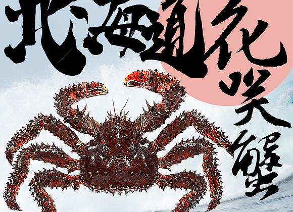 鮮活北海道花咲蟹(約斤四至斤半)