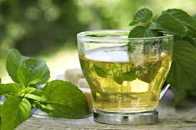 Productos Naturales -Té Verde
