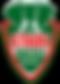 logo-stade-nantais-v2-737x1024.png