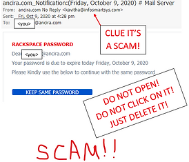 SCAM EMAIL PHISHING.png