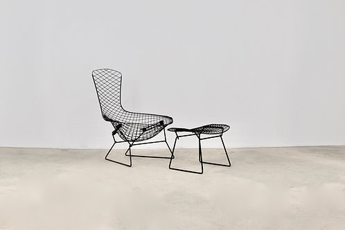 Bird Lounge Chair by Harry Bertoia for Knoll,1960