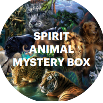 Spirit Animal Mystery Box - An Intuitive Discovery for Children
