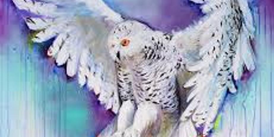 Children's Spirit Animal Online Series with Gift Box (1)