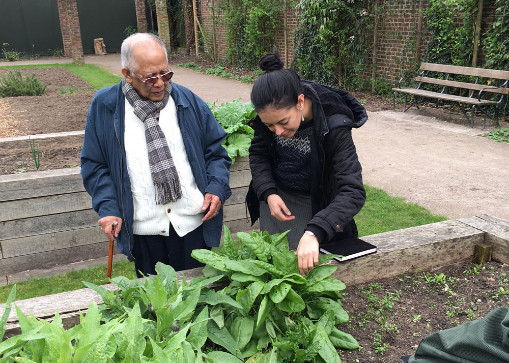 thc change collective ealing project gardening
