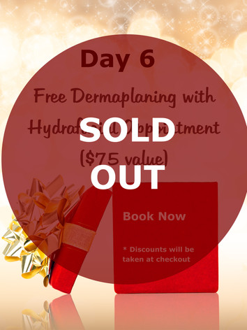 Day 6 Sold Out.jpg