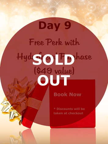 Day 9 Sold Out - Copy.jpg