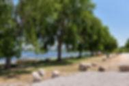PK-Bug-Beach.jpg