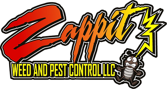 Zappit%20Logo_edited.png