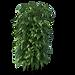 Bamboo1.png
