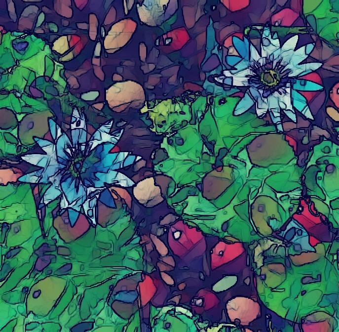 Water Lilies by Lisa Jo Rudy