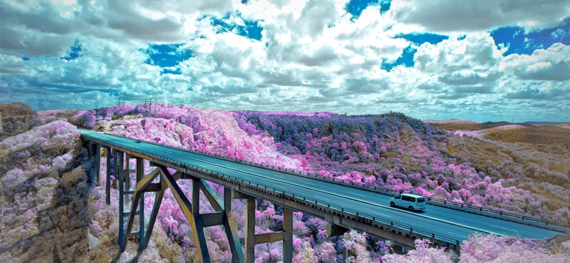 Bridging Reality by Donna Oglesby