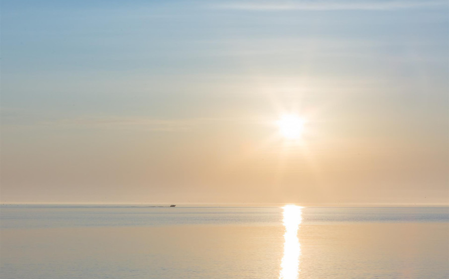 Sandy Neck Sunrise by Denise Barker