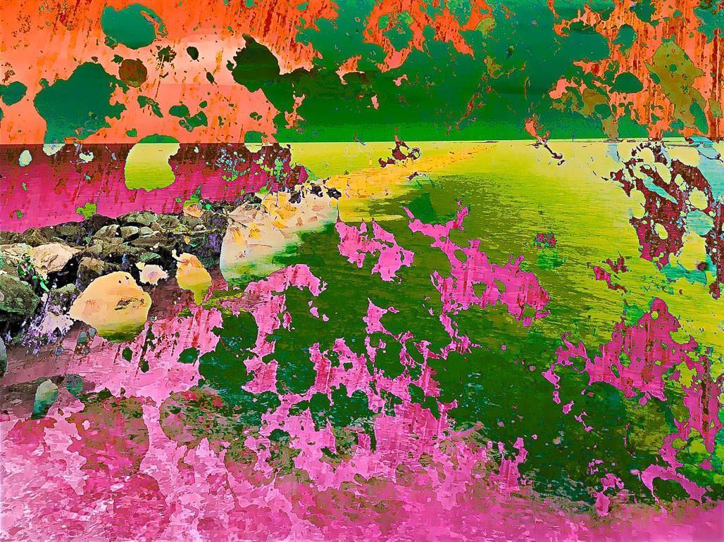 Vivid Dreams by Jose Castro