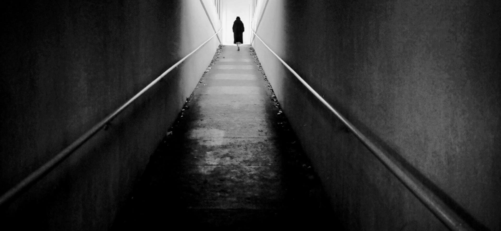 On St Anthonys Way by Nicholas Maffei