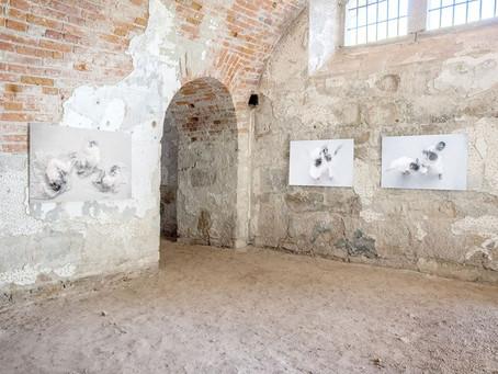 50x50x50 Art Südtirol