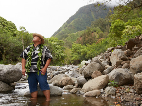 Hawaiian Soul - In two short years, Kalani Pea went from singing karaoke to winning a Grammy
