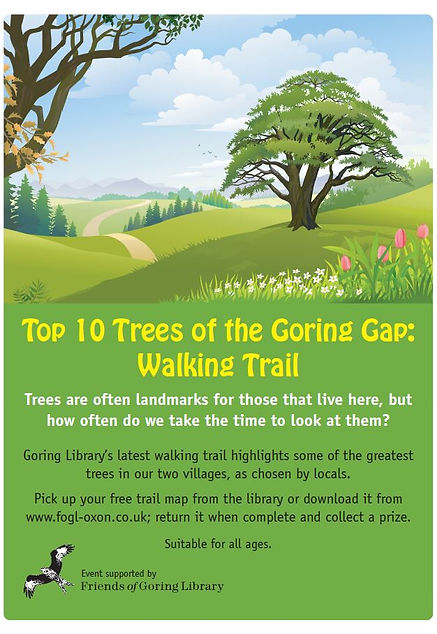 tree trail.JPG