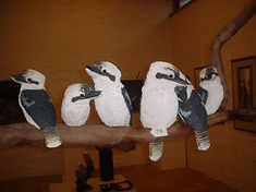 family-laughing-kookaburras-300x225.jpg