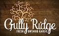 Gully Ridge Farms Garlic | Fresh local garlic buy now Ontario