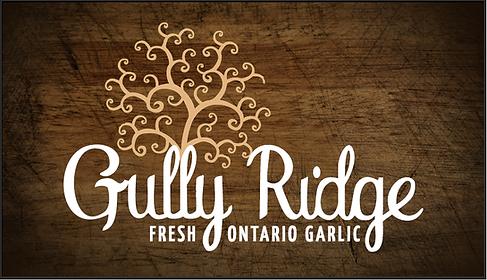 Gully Ridge Farms Garlic | Fresh local garlic buy now Ontario