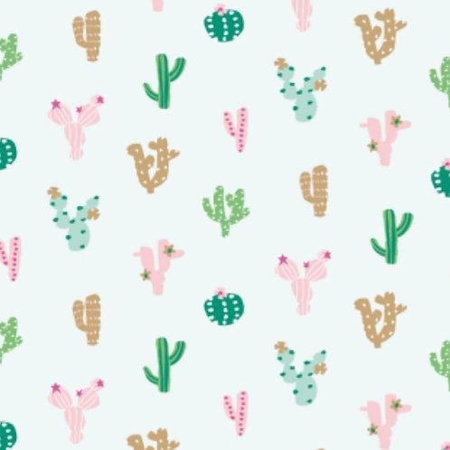Cacti from Ocean Drive by Dashwood Studio