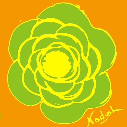 La Flor Pop Art #41