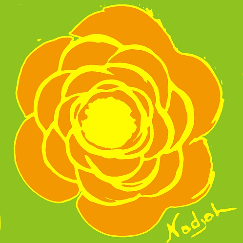 La Flor Pop Art #43
