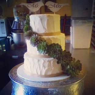 Succulents Cake.jpg