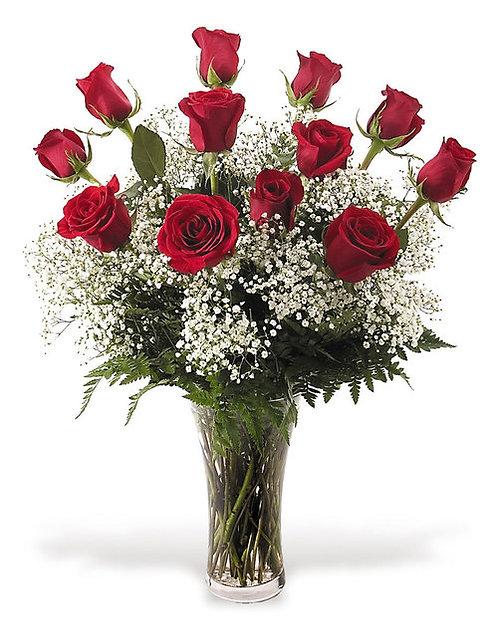 Dozen Red Roses + Fillers