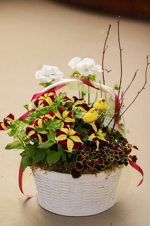 Small Annual Basket